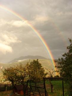 Regenbogen, 2015
