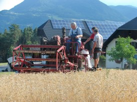 Getreideernte, 2013