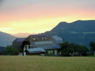 Morgenstuden am Rautnerhof, Juni 2016