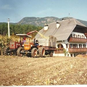 Damals, als am Hofe noch eigener Mais angebaut wurde,1986