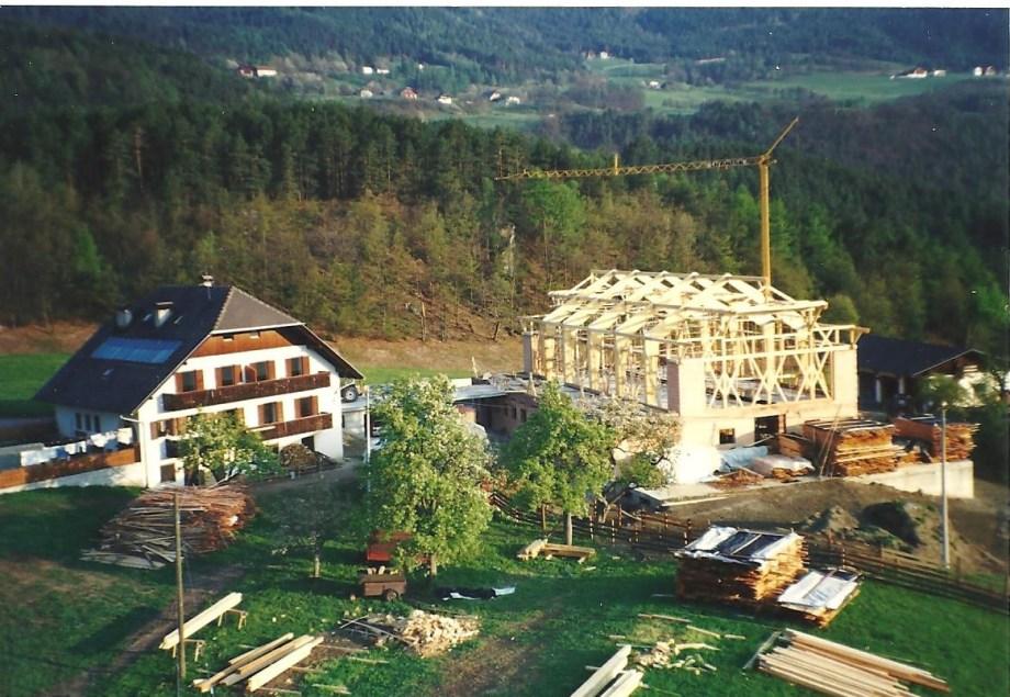 Stadelbau Frühjahr 96 001
